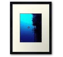 FLYING THE BANNER! Framed Print
