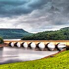 100 Lady Bower Reservoir, Derbyshire by George Standen