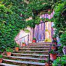 Entering Into Paradise Villa Cimbrone by daphsam