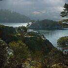 Misty Morning by Yukondick