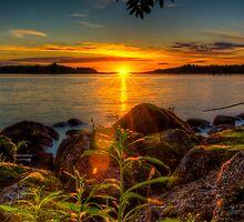 Midnight sun, as seen on Tantti Island by Joose Järvenkylä