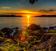 Midnight sun, as seen on Tantti Island by Joose Järvenkylä
