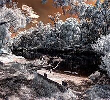 Warren river infrared by BigAndRed
