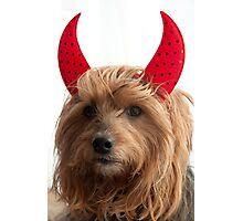 Angelic Devil  Photographic Print