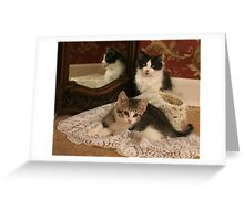 Wedding Veil Greeting Card