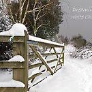 White Christmas  by JEZ22