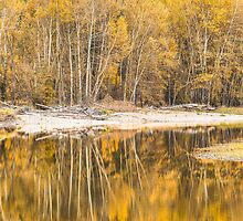 Autumn Reflections in the Kettle River by Jim Stiles