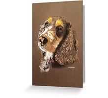 Kizzy the multi-coloured Cocker Spaniel Greeting Card