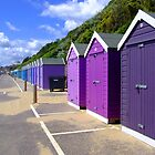 Beach Huts by ChrisCopley