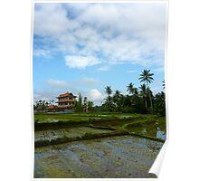 Bali Rice Fields Poster