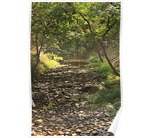 Dry Creek Bed Poster