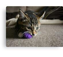 Purple Ball Canvas Print