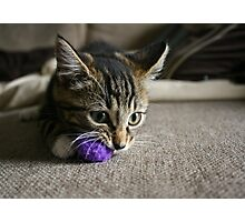 Purple Ball Photographic Print