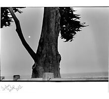 Earth/Moon Photographic Print
