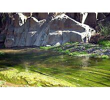 Mossy Stream Photographic Print