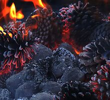 Pine Cone Inferno by Donuts