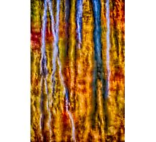 Fall in Decay Photographic Print