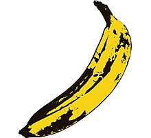 Banana Andy Warhol for scale Photographic Print