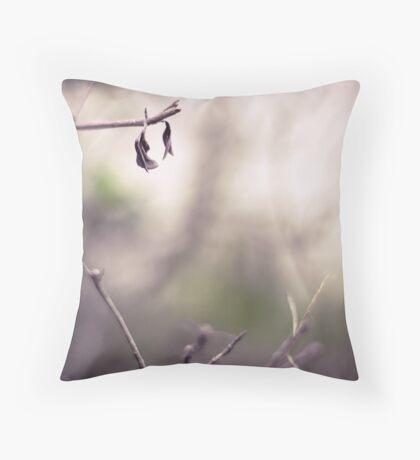 *Desolate Throw Pillow