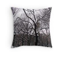Central Park Lantern Throw Pillow