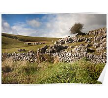 Out on the Dales Poster