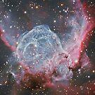 Supernova Remnants by SOIL
