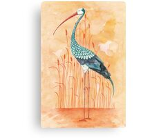 An Exotic Stork Canvas Print