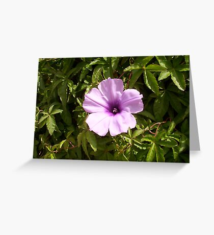 Rogue Flower Greeting Card