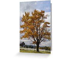 Annual Cascade Greeting Card