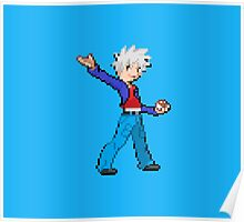 Pokemon Selfmade sprite Poster