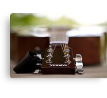 Guitar Outdoors Canvas Print