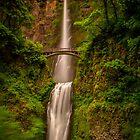 Multnomah Falls  by mrmattb