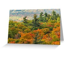 Gatineau Park Lookout Greeting Card