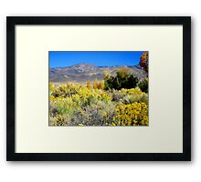 Beautiful White Mountains In Fall Framed Print