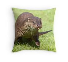 Ottering about Throw Pillow