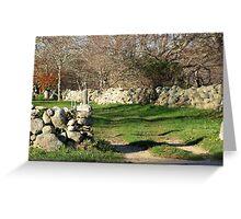 Chilmark driveway amongst the brambles Greeting Card