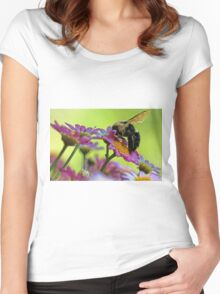 Bumble Bee and Beautiful Marguerite Daisies Women's Fitted Scoop T-Shirt