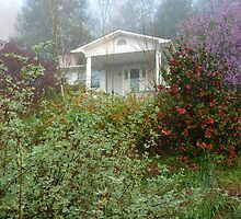 Gourley House / Foothills of Tennessee by JeffeeArt4u