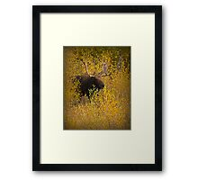 The Entrance Framed Print