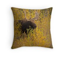 The Entrance Throw Pillow