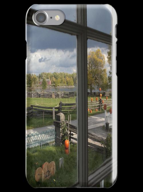 Through the window by Eunice Gibb