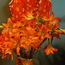 Day lillies. from my garden. by MardiGCalero
