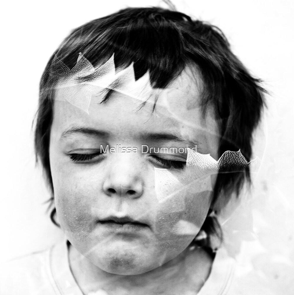 Little Banksia Man by Melissa Drummond
