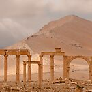 Palmyra  by louise