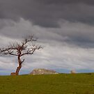 Storm Clouds Over Dog Rocks by John Sharp
