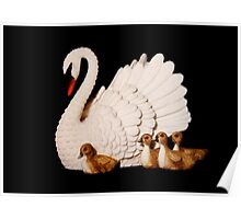 Swan & Babies Poster