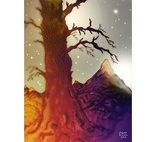Fantasy Tree Pen Drawing Photographic Print