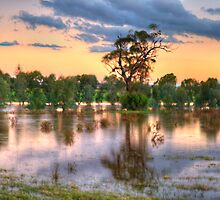 A Land of Droughts & Flooding Rains - Junee, NSW Australia (35 Exposure Pano) - The HDR Experience by Philip Johnson