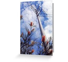 Wires Over Wattle Greeting Card