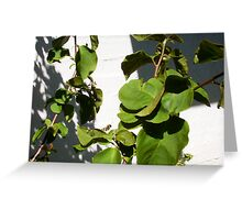 Paper wasp Greeting Card